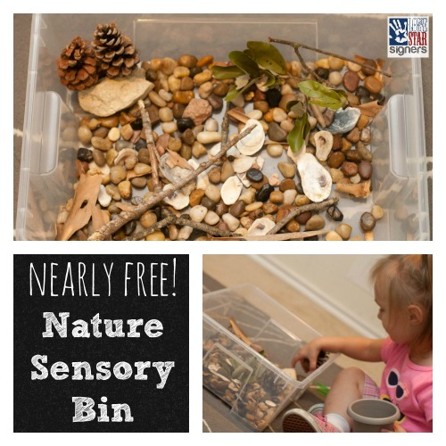 Nearly FREE Nature Sensory Bin