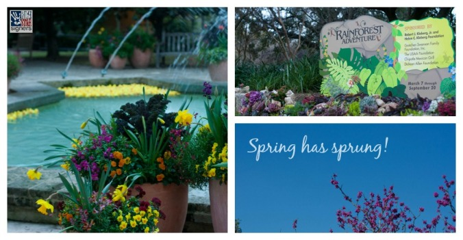 Spring at the San Antonio Botanical Garden | Lone Star Signers