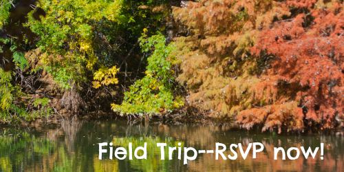 Join Lone Star Signers for a fall field trip!